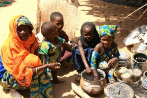 Niger, OCHA, Lac Tchad, Aide alimentaire